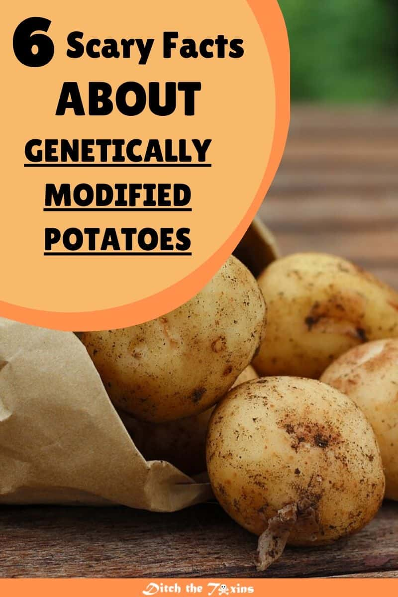 6 Scary Facts about GMO Potatoes